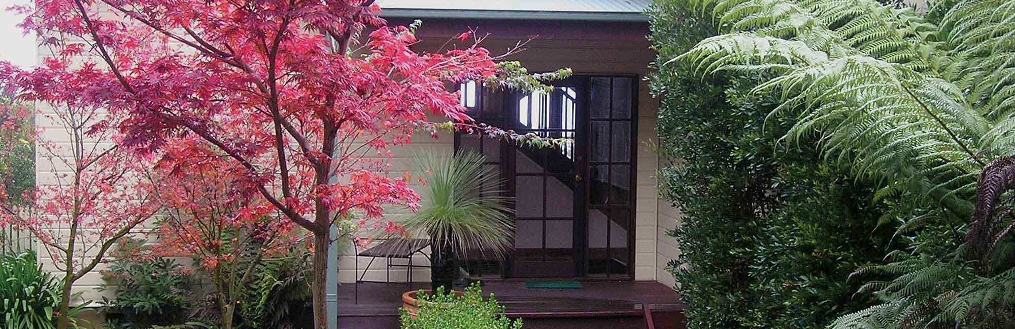 Blue Mountains Bed and Breakfast